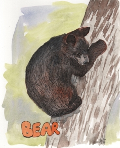 Bear - watercolor and ink