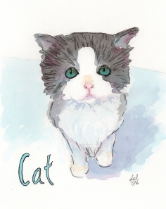 Cat - watercolor and ink