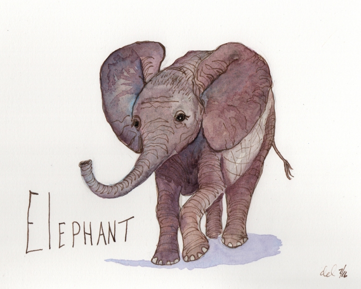 Elephant - watercolor and ink