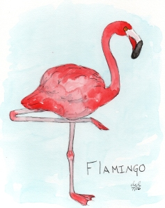 Flamingo - watercolor and ink