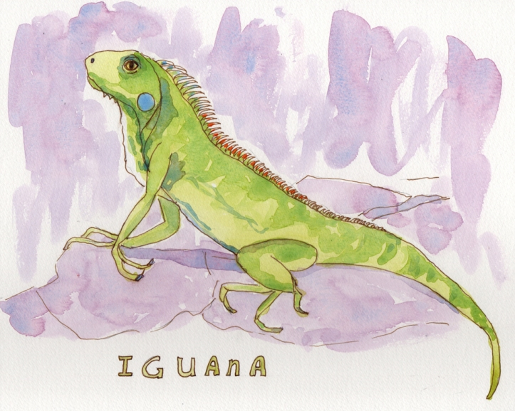 Iguana - watercolor and ink