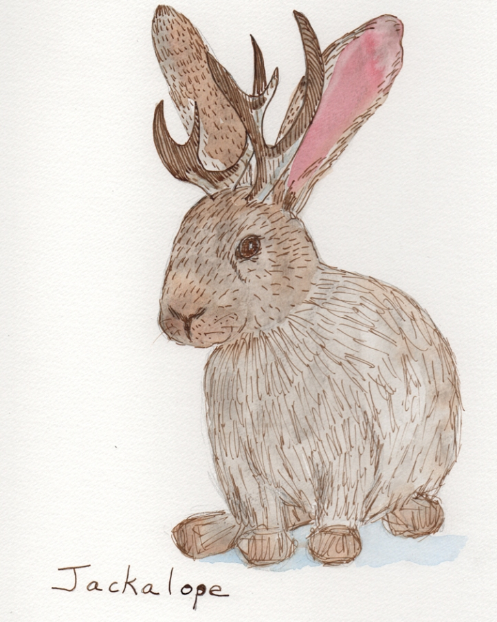 Jackalope - watercolor and ink