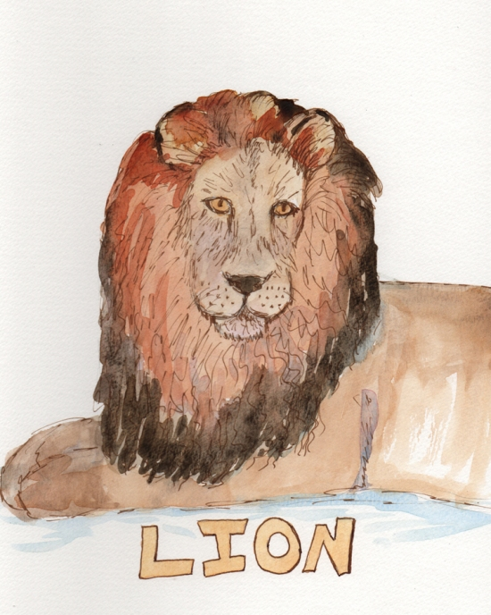 Lion - watercolor and ink