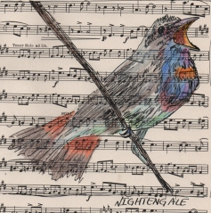 Nightengale - watercolor, ink and colored pencil on sheet music